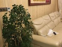 出售涵碧园8室2厅2卫330平米288万住宅