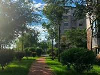 出售:万锦豪庭3室2厅1卫115平米88.8万住宅