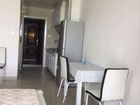 友创 滨河湾 单身公寓 精装 43平 满2年 售30.8万