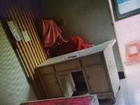 出租双灯小区2室2厅1卫85平米900元/月住宅