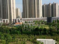 出售金色华庭2室1厅1卫95平米50万住宅