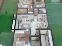 新楼盘!文华苑小区 新建滨中校区房 均价9898 具体一房一价 都是电梯房 !